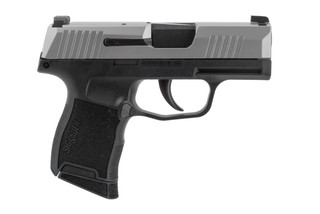 Sig P365 9mm Stainless Night Sights